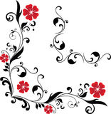 Floral corner. 2 floral corners on white background (vector Royalty Free Stock Images