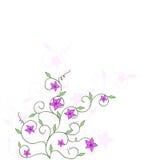 Floral corner design Stock Images