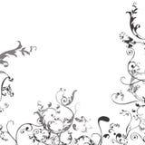 Floral Corner Design Royalty Free Stock Images
