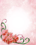 Floral Corner Design Azaleas. Illustration composition for wedding invitation, Mother's Day or Easter background, border or frame with pink azaleas, ribbons and Royalty Free Stock Images