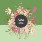 Floral cosmos flowers and crocus retro vintage background Royalty Free Stock Images