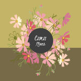 Floral cosmos flowers and crocus retro vintage background Stock Photography