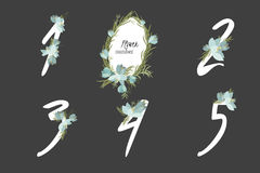 Floral crocus collection numbers in vintage color. One, two, three, four, five - signs vector Stock Images
