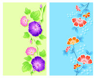 Floral curtains Royalty Free Stock Photography