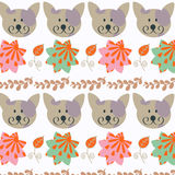 Floral cute cats background  card design Royalty Free Stock Photography