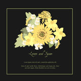 Floral daisy sunflower background  illustration. Floral  daisy sunflower background  illustration. Sprig background, floral greeting card Stock Photos
