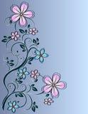 Floral decor Stock Photos