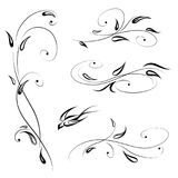Floral decor with bird. Swirl line stylish flower set decorative Royalty Free Stock Image