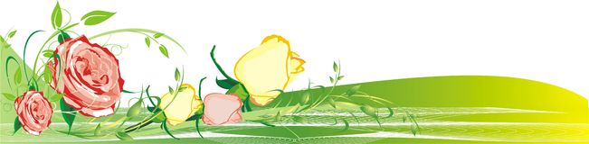 Floral decor. Bouquets of roses. Vector illustration Royalty Free Stock Image