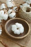 Floral decor with dry cotton flower in vintage wooden bowl Royalty Free Stock Photo