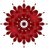 Floral decoration. Abstract red floral decoration on white background Royalty Free Stock Image