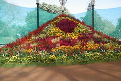 Floral Decoration. Flower Show at  Lalbagh Botanical Garden, Bangalore, India Stock Photography
