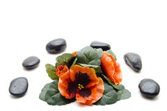 Floral decoration with black stones Stock Photos