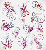 Floral decoration  collection Royalty Free Stock Photo