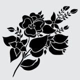 Floral decoration. Elegant decorative flowers, design element. Floral branch. Floral decoration for vintage wedding invitations, greeting cards, banners Stock Image