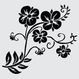 Floral decoration. Elegant decorative flowers, design element. Floral branch. Floral decoration for vintage wedding invitations, greeting cards, banners Royalty Free Stock Photo