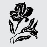 Floral decoration. Elegant decorative lily flowers, design element. Floral branch. Floral decoration for vintage wedding invitations, greeting cards, banners Royalty Free Stock Photography