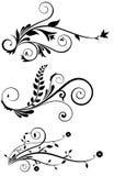 Floral Decoration Elements Stock Images