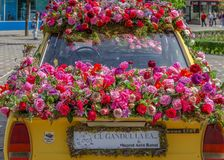 Floral decoration of an old car in Victory Square, Timisoara, Ro Stock Image