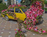 Floral decoration of an old car in Victory Square, Timisoara, Ro Royalty Free Stock Photography