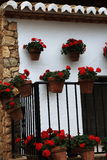 Floral decoration of the town of Mijas, Malaga, Spain Royalty Free Stock Photos