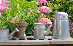 Floral decoration with watering can Royalty Free Stock Images
