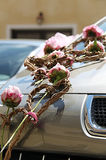 Floral decoration on wedding car Stock Image