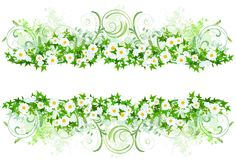 Floral decoration with white daisies Stock Images