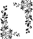 Floral decorations Royalty Free Stock Images