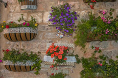 Floral decorations of palace wall Stock Image