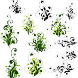 Floral decorations set. Choice of floral ornaments isolated on white background Stock Images