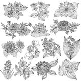 Floral decorations set Stock Images