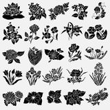 Floral decorations set Royalty Free Stock Photo