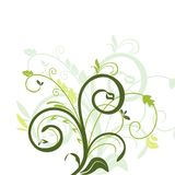 Floral decorative background Stock Image