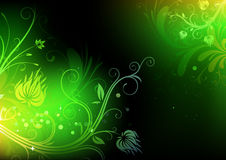 Floral Decorative background Royalty Free Stock Image