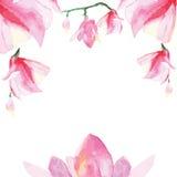 Floral decorative frame royalty free illustration