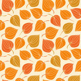 Floral decorative seamless pattern. Vintage cute background with flowers Royalty Free Stock Image