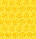 Floral decorative seamless texture  Background wit Royalty Free Stock Photography