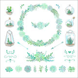 Floral decorative set with succulents and cactuses Stock Images