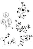 Floral decores Royalty Free Stock Photos