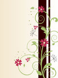 Floral design Royalty Free Stock Images