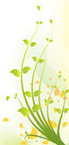 Floral Design. A beautiful green and yellow floral background design Stock Image