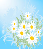 Floral Design Royalty Free Stock Photography