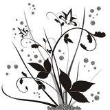 Floral design. Black & white floral design ellements Stock Images