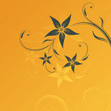 Floral design. With space for text Stock Photography