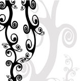 Floral Design. Black and White Decorative Floral Background Stock Photography