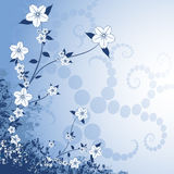 Floral Design. On a blue background Royalty Free Stock Photo