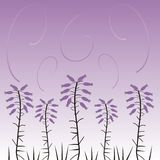 Floral design. Spring background with violet flowers Royalty Free Illustration