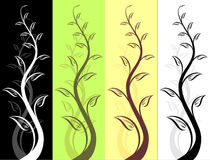 Floral design. For different aplications Stock Photos
