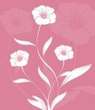 Floral design stock images